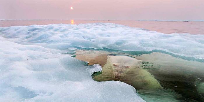 El concurso anual de National Geographic premia las imágenes más bellas de  personas, lugares y naturaleza