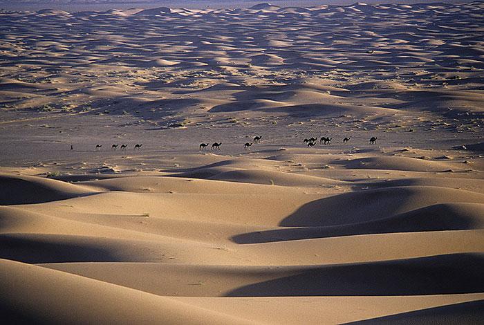 Okaimal-Desierto-de-Zagora-1988