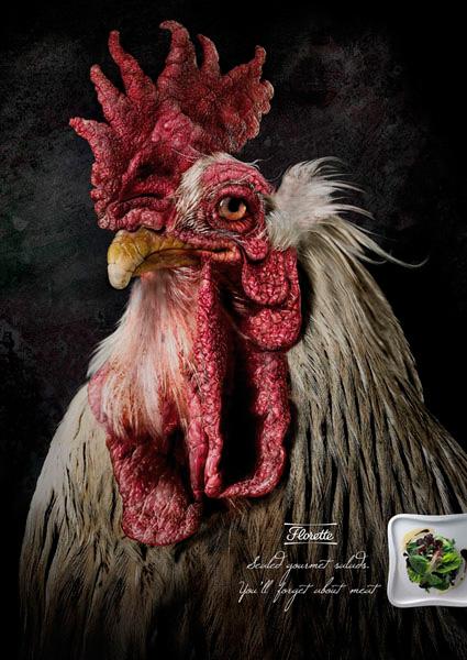 florette_chicken1