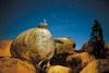 10 Cigüeñas en la noche