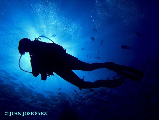 Fotografía submarina (1): los 10 consejos de un experto