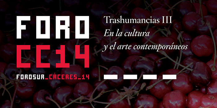 ForoSur-Caceres-14