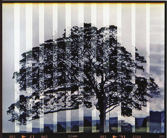 libro-fotografia-experimental-3