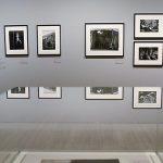La gran retrospectiva de Bruce Davidson, el fotógrafo humanista, llega a Madrid